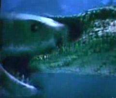 ワニVSサメ2