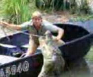Steve Irwin4